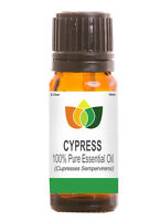 Cypress Essential Oil Pure Natural Authentic Cupresses Sempervirens Aromatherapy