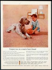 1957 English Setter and little boy photo Carpet Institute vintage print ad