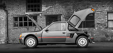 Peugeot 205 T16 - 30x14 Inch Canvas Rally Art - Framed Picture Print