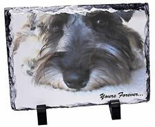 Schnauzer Dog 'Yours Forever' Photo Slate Christmas Gift Ornament, AD-S68ySL