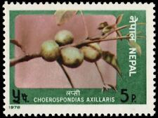 "NEPAL 352 (Mi365) - Edible Fruit ""Choerospndias axillaris"" (pa80287)"