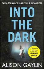 Into the Dark (Brenna Spector), New, Gaylin, Alison Book
