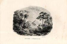 Stampa antica Veduta ISOLA MADRE e Lago Maggiore 1855 Old print