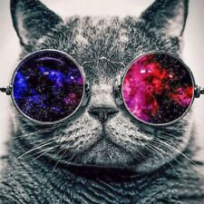 Diamond Painting 5D Round Drill Cat Wearing Glasses Craft Art Hmade Practice