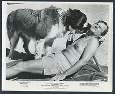 BOB CRANE in Superdad '74 ST BERNARD DOG BARECHESTED