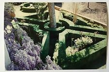Vintage 90s PHOTO From Abroad Flower Rose Garden Carved Bushes Purple Flowers