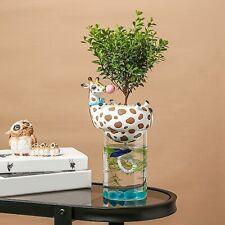 Vaso di Fiori Plastica Self-Watering Pianta Vetro Per Casa e Giardino Accessori