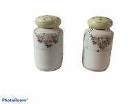 Nippon Vintage Porcelain Hand Painted Roses Salt & Pepper Shakers