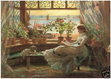 C J Lewis - Reading by the Window - MEDICI POSTCARDS