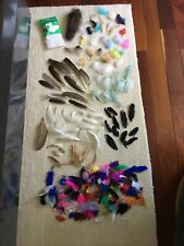 Nice Large Lot Of Fly Tying Feathers Fur Crafts Tail Mink?