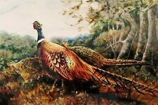 Original Pheasant American painting limited edition canvas print stretched