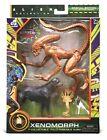 """Lanard Alien Figure Xenomorph Runner Action Figure (7"""") 2021 Walmart Exclusive"""