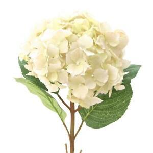 Extra Large Cream Faux Silk Hydrangea, Realistic Artificial Cream Silk Flower