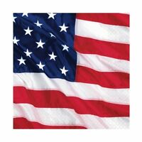 AMERICAN FLYING COLOURS USA BEVERAGE NAPKINS PARTY TABLE DECORATION FLAG PKT 16