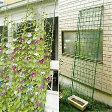 Green Garden Vegetable Trellis Netting Support For Climbing Bean Plant Vines New