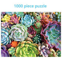 1000 Piece Jigsaw Personalized Succulent Spectrum Plants Puzzles For Kids New