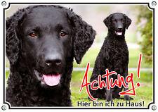 Hundeschild - Curly Coated Retriever - Spitzenqualität