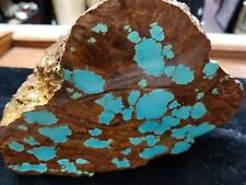 Rare Huge (approx 6lbs) Chunk of Nevada #8 Turquoise