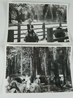 "A Pair of Photos from Summer 1959 Kids Horseback Riding at the Park 3"" X 5"""