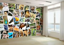Different Animals Collage Wallpaper Mural Photo 15803964 budget paper