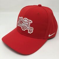 pretty nice 10b65 b1ef0 Nike Classic 99 Denmark Danmark Lion Red Baseball Hat Adjustable Cap Dri  Fit A5B