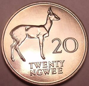 Rare Proof Zambia 1968 20 Ngwee~Bohor Reedbuck~Extreme Low Mintage 4,000~Fr/Ship