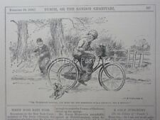 & Bicicletta Triciclo LADY viene eseguito su un cane-FEB 18A 1914 PUNCH CARTOON
