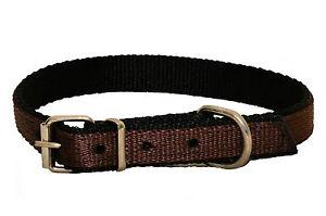 BROWN Strong NYLON Dog Puppy Collar BLACK PADDED Web