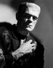 "The Bride of Frankenstein  Photo Print 13x19"""