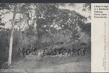 Sierra Leone Postcard - A Rope Bridge In a Woodland Pathway  MB1103