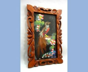 vintage REAL FEATHER and PAINTED ~BIRD ART w/CARVED WOOD FRAME