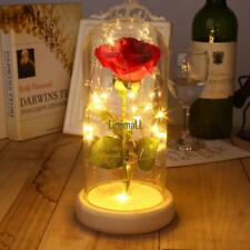 Pink Rose Enchanted Red Silk Rose and LED Light  in Glass Dome on a Wooden LM 01