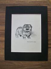 Pekingese Puppy Dog Print The Mighty Atom KF Barker 1942 11x14 Bookplate Matted