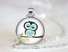 Cartoon Owl glass dome Tibet silver Chain Pendant Necklace wholesale