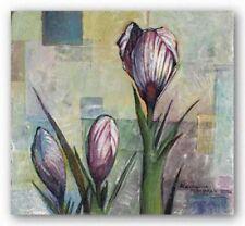 Crous Alexandra Kruglyak Art Print 20x20
