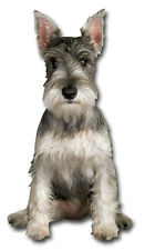 Mini Schnauzer Die Cut Dog Blank Card - Greeting Card by Paper House Productions