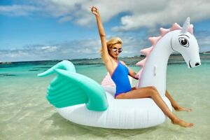 Airtime Giant Pastel Pegasus Inflatable Ride On Float live a sunny life - HUG...