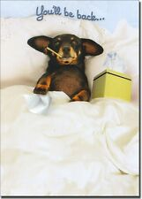 Dachshund in Bed Dog Get Well Card - Greeting Card by Avanti Press