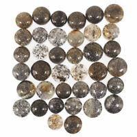 38 Pcs Natural Black Sunstone 10.8mm-14mm Glittering Beautiful Cabochon Gems Lot