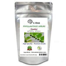 1 KG PHYLLANTHUS AMARUS,NIRURI POWDER Herb Organic Pure Organic Thailand
