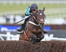 More details for altior 32 riidden by nico de boinville (horse racing) keyrings-mugs-photos