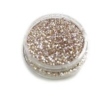 Glitter Loose Powder Champagne Eye Shadows