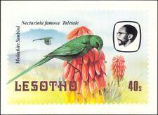Lesotho 1982 Birds/Malachite Sunbird/Flowers/Nature  Postcard (a94)