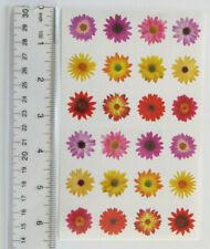 Mrs Grossman Flowers By The Dozen - Giant Sheet of 2 Dozen Colorful Flowers