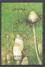 Champignons Guyane (29) bloc oblitéré