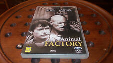 Animal Factory (1999) Dvd ..... PrimoPrezzo