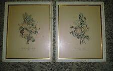 "J.L.PREVOST Pair of Paris Floral Art Prints, Framed.  Vintage. 15"" X 18"""