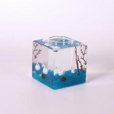 Clear Square Glass Vase Flower Air Planter Pot Terrarium Container Decor