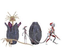 Creature Accessory Pack , Alien: Covenant, Zubehör-Set Actionfigur NECA 6-teilig