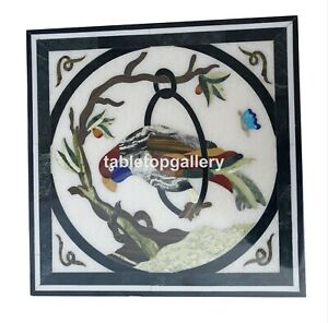 15'' Square Marble Top Coffee Table Multi Parrot Inlay Work Cafeteria Decor B098